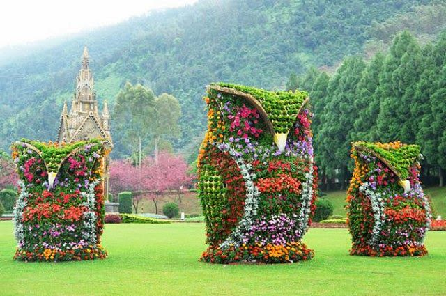 The Giant Flower Owls In Nantou County, Taiwan - image via Flickr by Ernesto Huang @Erin Acuna  @Elle G