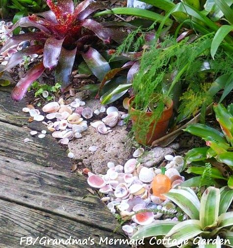 Shells along a garden path. See more of this beachy garden here: http://www.completely-coastal.com/2015/05/tropical-florida-garden-with-mermaid-art-shells-buoys.html