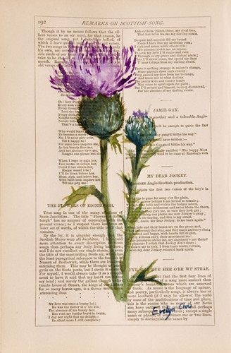 Thistle on Robert Burns poems... would love to use a thistle and have the font running down the side of the stem