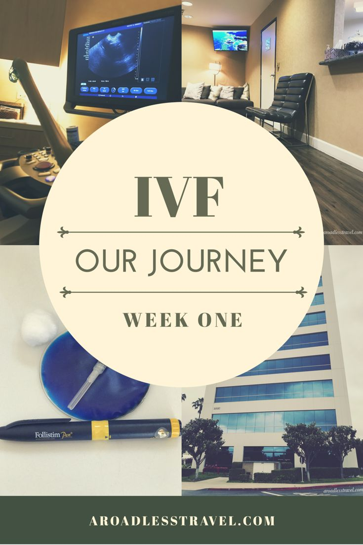 149 best ivf images on pinterest journey the journey and drake fandeluxe Image collections
