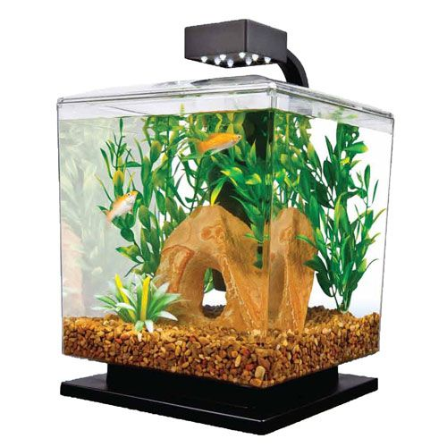 how to get crystal clear water in your fish tank