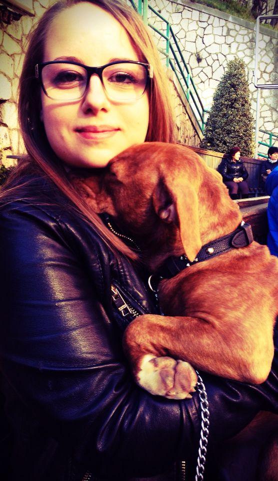 La dolcezza  Dea <3 #pitbull #pitbulllove