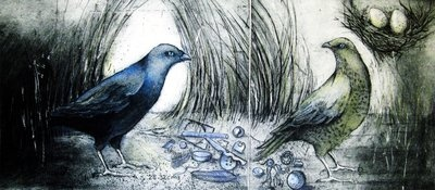He and She (Bower birds)