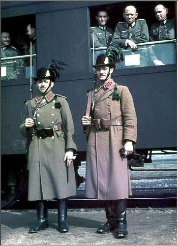 Magyar csendőrség (Hungarian gendarmerie)