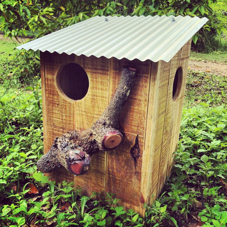 A personal favourite from my Etsy shop https://www.etsy.com/au/listing/257306573/pallet-possum-bird-boxes
