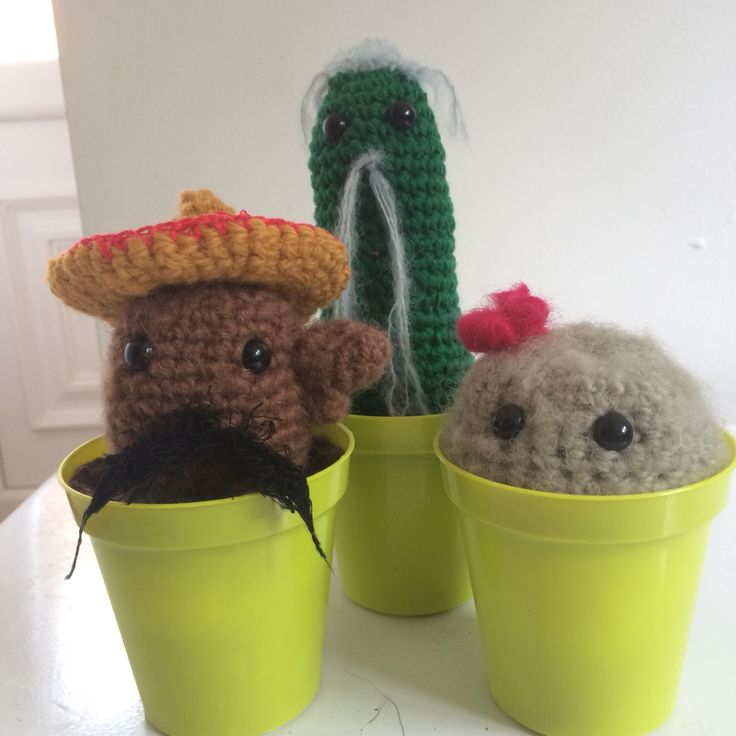 Pedro, penny and Kane. Cacti Off to the Norwich gift emporium today. Crochet cactus