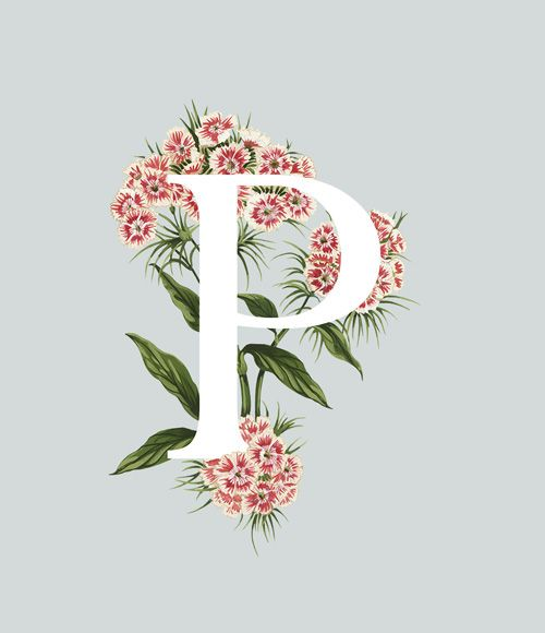 An a z of edible flowers on behance type calligraphy