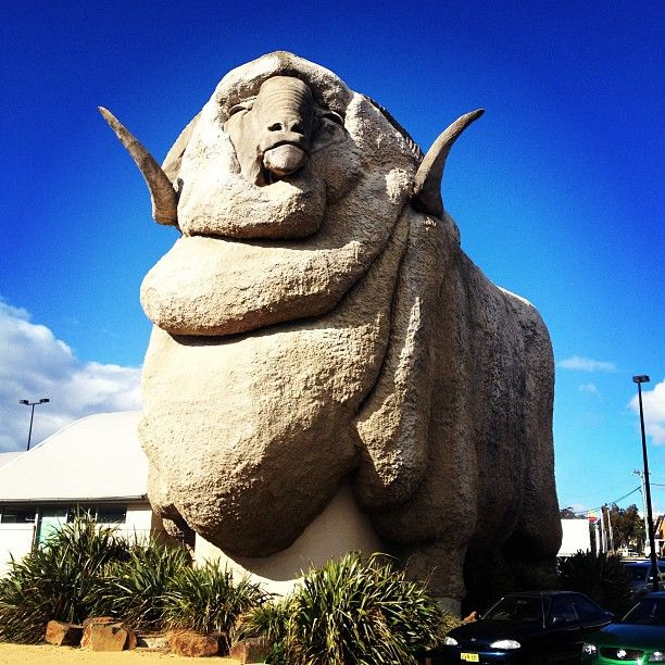 The Big Merino in Goulburn, NSW.  Does what it says, it's a big sheep....