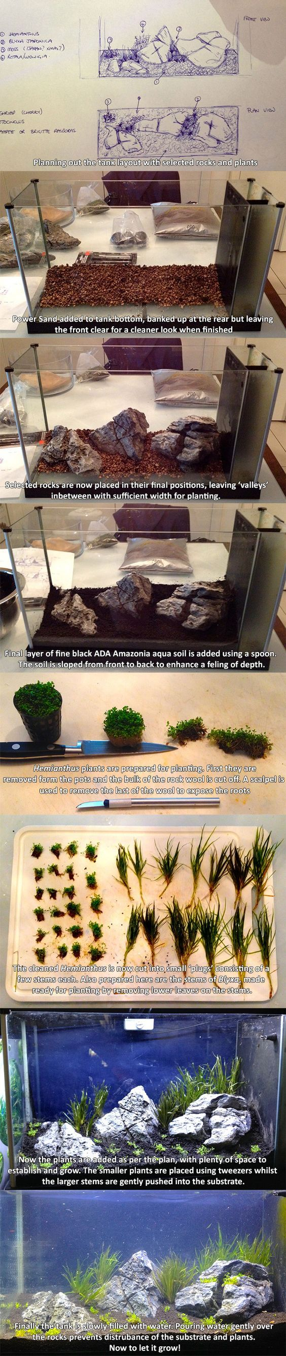 Here is a step-by-step guide to a Iwagumi style set up I recently did. This is a 5 gallon Fluval tank, so really small, and sits on a bookcase in the living room.: