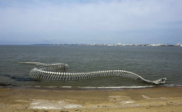 down the estuary is a 200-foot skeletal creature created by Chinese artist Huang Yong Ping; anchored to the beach, its head and tail may be all that's visible depending upon the height of the tide.
