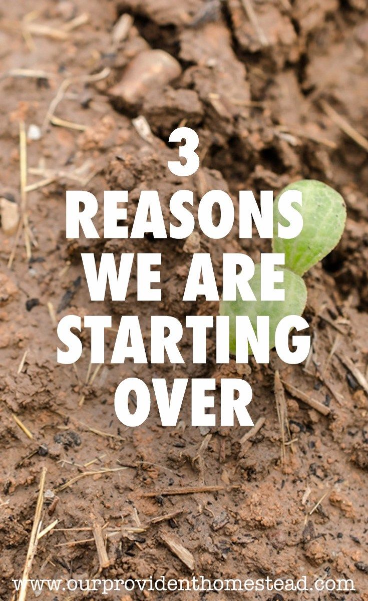 Why did you start homesteading? We are starting over and we can help you get started too.  #homesteading #homesteader