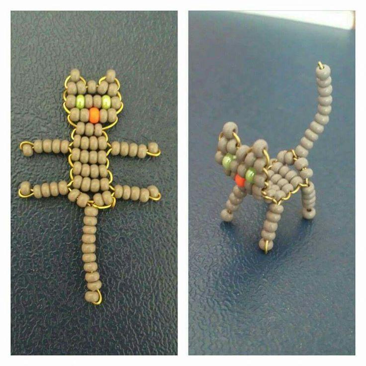 2D-s cica / cat