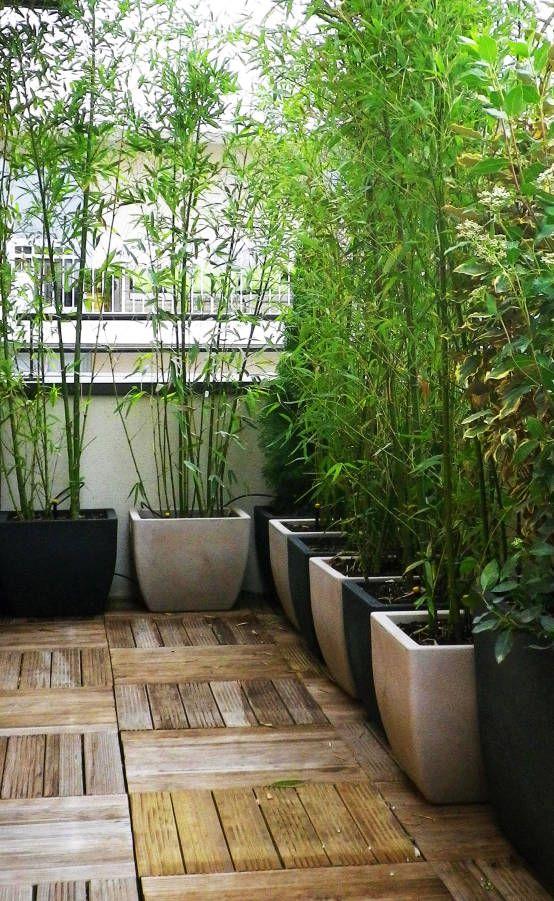 Perfect Die besten Gartengestaltung kosten Ideen auf Pinterest Pinterest kosten Garten pflaster und R mersalat ziehen