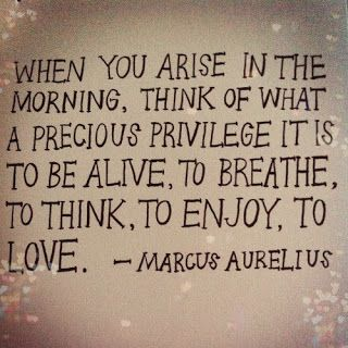 "Gratitude is ""WHEN YOU ARISE IN THE MORNING, THINK OF WHAT A PRECIOUS PRIVILEGE IT IS TO BE ALIVE, TO BREATHE, TO THINK, TO ENJOY, TO LOVE."" -MARCUS AURELUS"