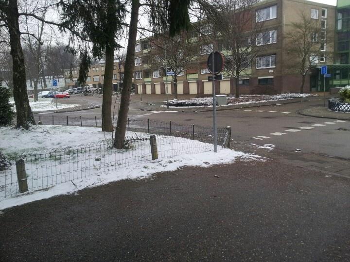 just taken winter is not over yet