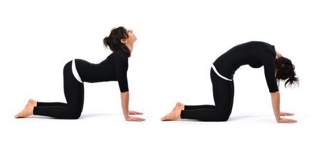 8 простых упражнений против болей в спине