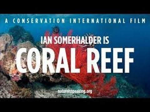 KORÁLOVÝ ÚTES - Ian Somerhalder mluví za korálové útesy...