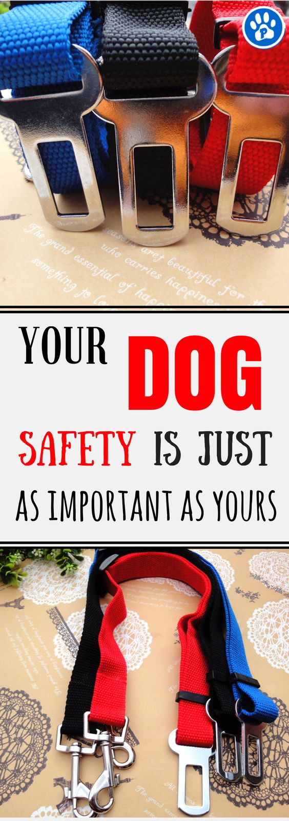 The Universal Safety Leash Car Seat Belt Restraint is the ideal accessory for keeping your dog safe and secure whilst travelling in your car. The seat belt restraint keeps dogs under control and safe