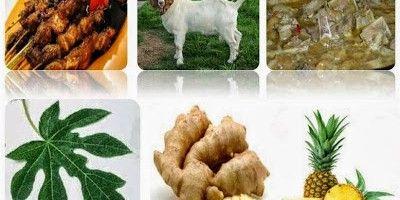Cara mengolah daging kambing supaya tidak bau apek | Seminung | Pinterest