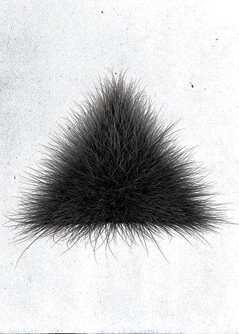 фото черный волосатый треугольник