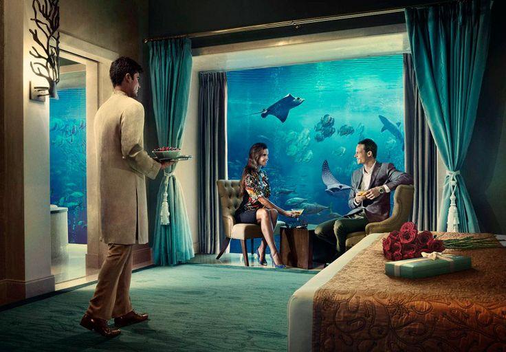 Te imaginas poder dormir rodeado de ¿tiburones, pirañas, peces de colores... y toda clase de animales marinos? Esto lo puedes hacer en el Hotel Atlantis Palm.