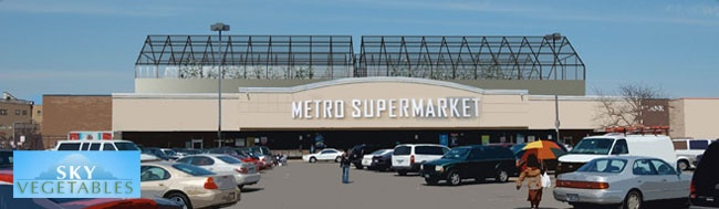 """Imagine the """"Metro Supermarket"""" near you where 40% of their produce they sell to you is grown on the unused surface on the top of the supermarket? Brilliant idea - I hope it spreads."""