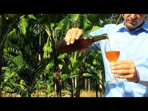 Vino di Banane fatto in casa - YouTube