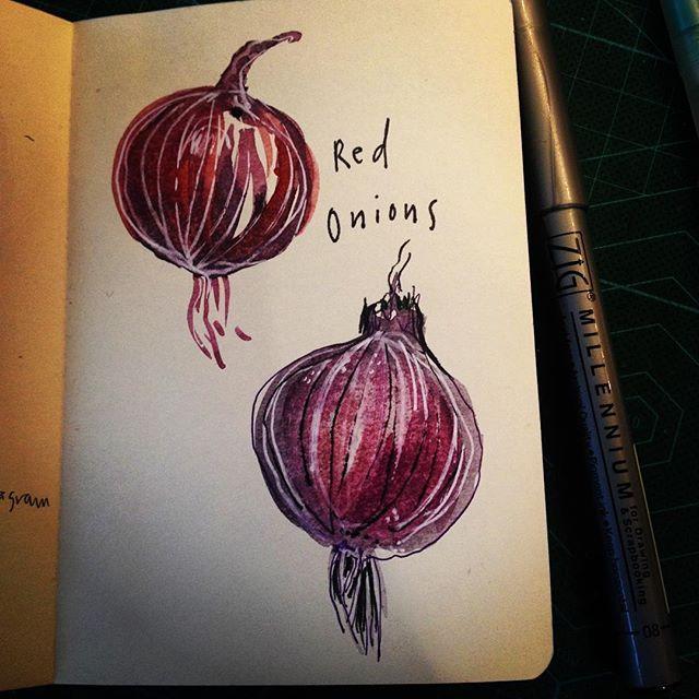 More veggies. Tonight cooking up some red onions #redonions #illustration #irish #igersdublin #fooddrawings