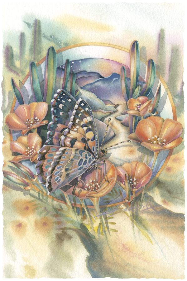 Realistic butterfly paintings - photo#36