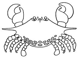 157 best Crabs images on Pinterest  Crabs Good day and Art
