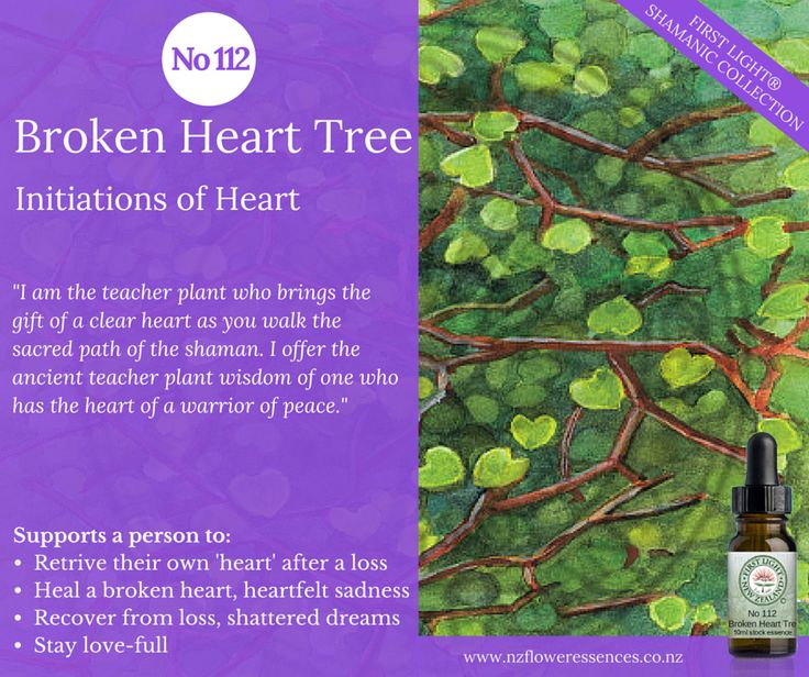 Broken Heart Tree - Initiations of Heart - assists in retrieving your 'heart' and keeping your 'heart' intact when in heartrending situations.  Supports recovery from loss or shattered dreams. Helps to stay love-full and connected to divine heart.