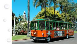 San Diego Attractions | San Diego Tourist Attractions | San Diego Seal Tour