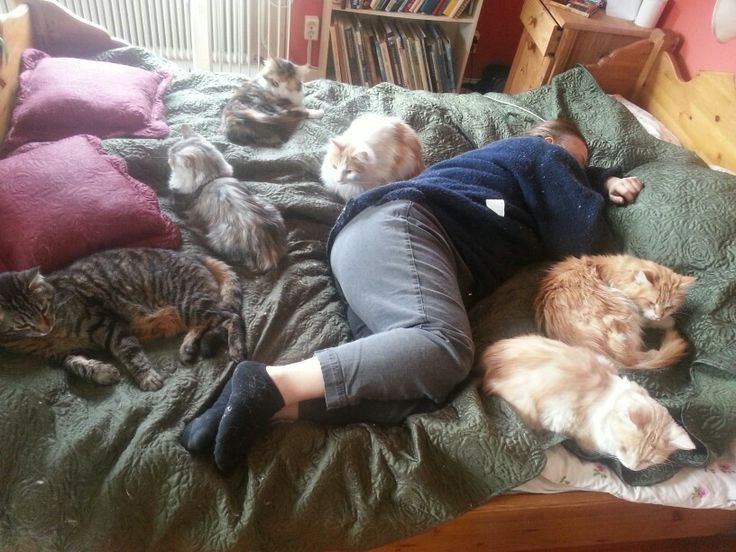 Never alone - me and my cats! <3