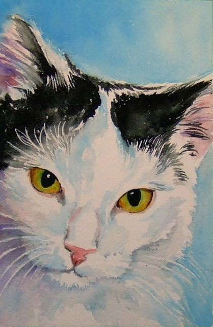 Scratch Me - signed ACEO cat art print