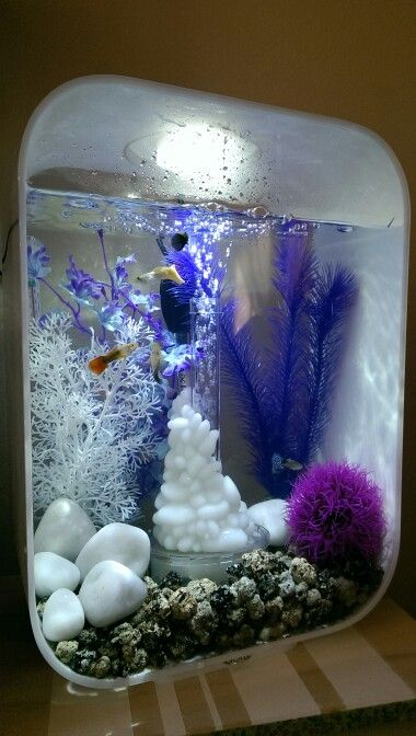 les 25 meilleures id es de la cat gorie aquarium biorb sur. Black Bedroom Furniture Sets. Home Design Ideas