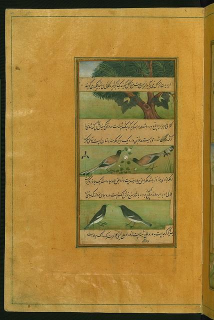 Illuminated Manuscript Baburnama, Walters Art Museum ms. W.596, fol.29a