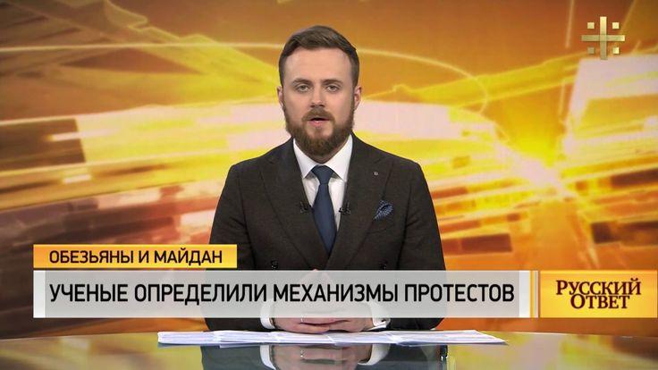 Обезьяны и Майдан: Ученые определили механизмы протестов [Русский ответ]