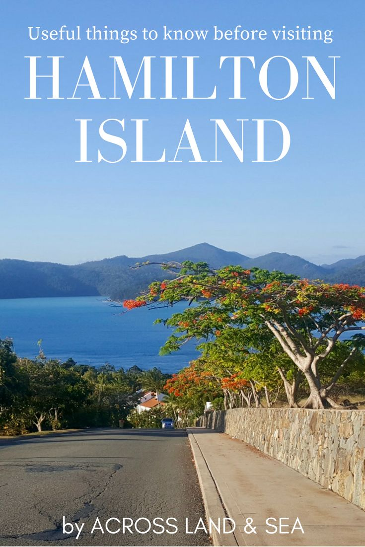 Useful things to know before visiting Hamilton Island