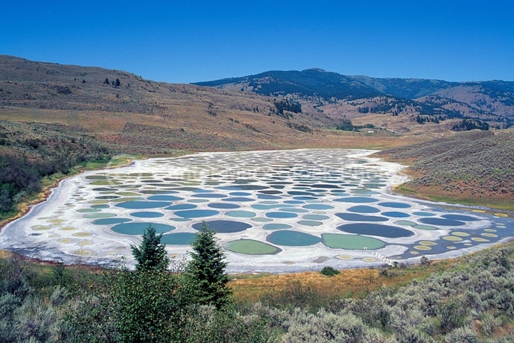 The Spotted Lake. Great view from Highway #3 near Osoyoos, South Okanagan, British Columbia