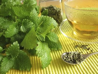 "Lemon balm, or ""Melissa officinalis,"" is an herb belonging to the mint family that's been used for centuries to treat anxiety, sleep disorders, indigestion and wounds. You can make lemon balm tea by steeping 1/4 to 1 tsp. of dried herb in hot water."