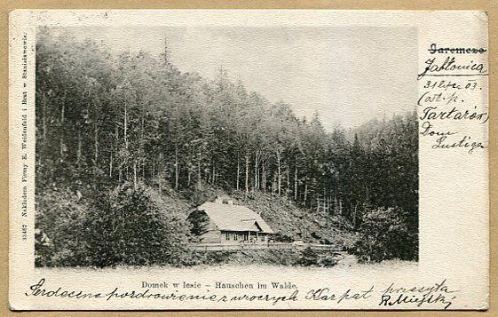 JAREMCZE  -  Domek w lesie - 1903