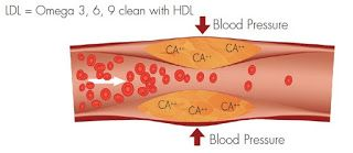 Laminine - kmeňové bunky pomáhajú: Odkaz od Dr. Andujara. Benefity Laminine, Omegy, I...