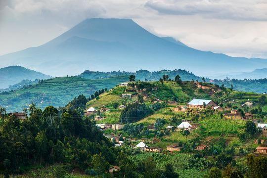 Gorillas and Coffee Bars? The Transformation of Rwanda