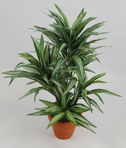 Dracena 42cm grün-gelb im Topf DA Kunstpflanzen künstliche Pflanzen Palmen