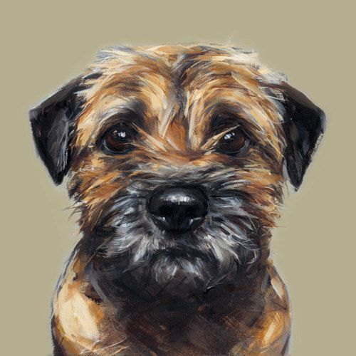 Border Terrier Collectable Ltd. Ed. Fine art print by paintmydog