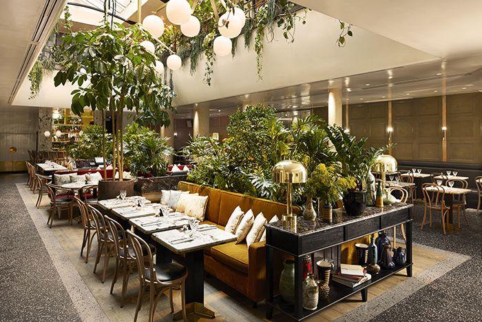 La célèbre brasserie parisienne change d'allure et adopte, grâce à la décoratrice Laura Gonzalez, tous les codes des nouveaux lieux branchés.