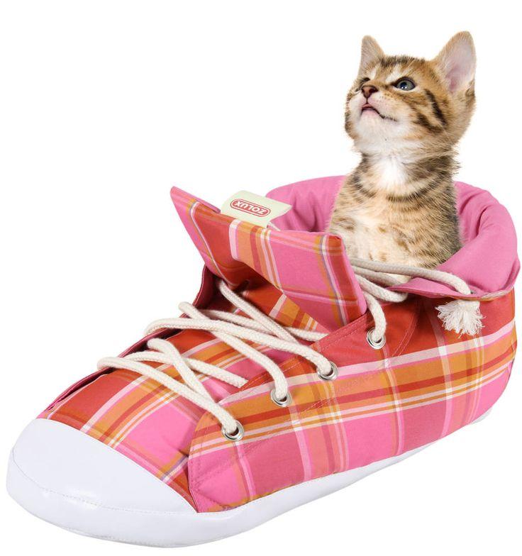 panier chat livraison rapide