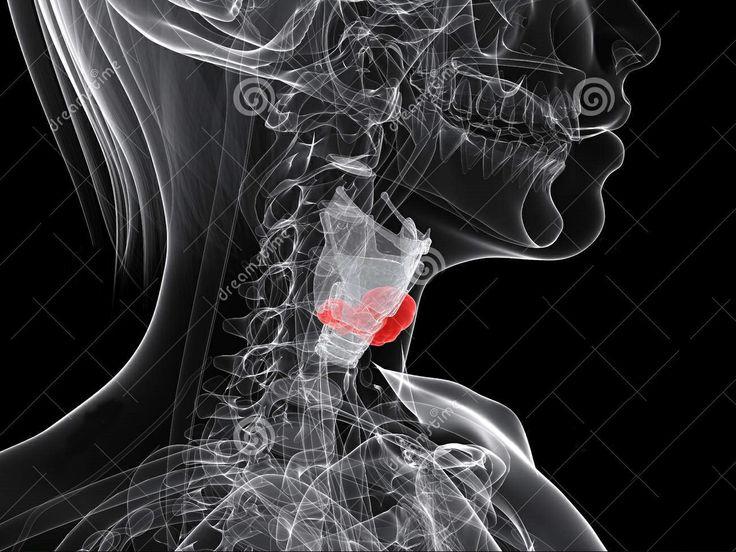 Quando fiz 29 anos descobri que tenho câncer na laringe. Os médicos falaram que tenho chance de sobreviver mais uns 10 anos se fizer o tratamento. Mas resolvi não fazer... Já desisti dessa vida.
