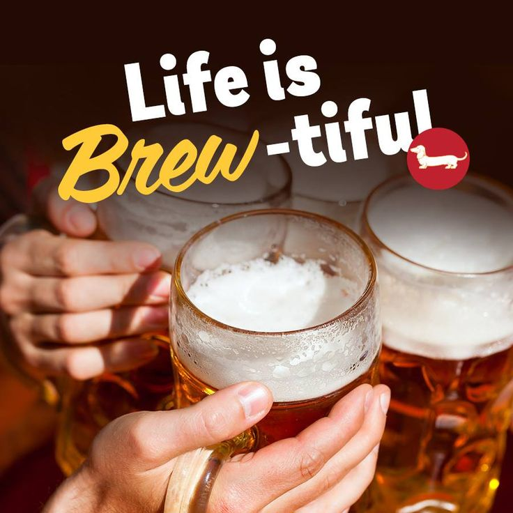 123 best images about beer quotes on pinterest craft