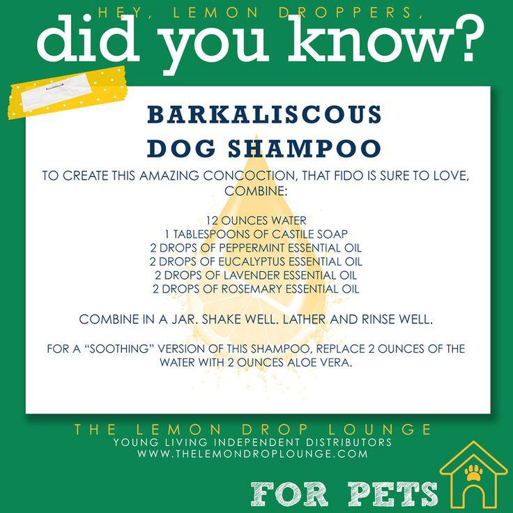 Dog Shampoo- Essential Oils- Young Living